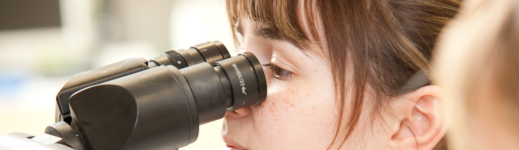 Katrin-Storr-am-Mikroskop_uitsnede